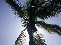 Name: IMG_20120310_103904.jpg