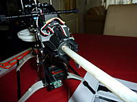 Name: P1010895.jpg