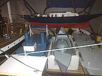 Name: Picture 570.jpg