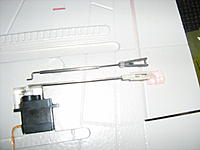 Name: IMG_7077.jpg