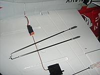 Name: IMG_7081.jpg