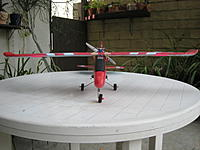 Name: IMG_1750_3.jpg