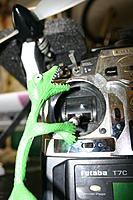 Name: IMG_6846.jpg