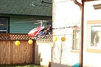Name: 100_0024.jpg