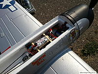 Name: P47 with Guardian_2.jpg