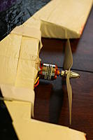 Name: 68IMG_4785.jpg