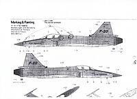 Name: F-20 Markings.jpg