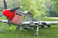 Name: P-51 Mustang_Photoshoot_5-30-20100034.jpg