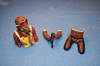 Name: Sandancer_FMS V7.5 P-51 BBD_AOL Pilot_01-26-2013_0000.jpg
