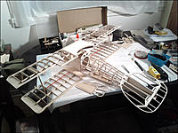 Name: Albatross_WIP_Mar10_2013.jpg