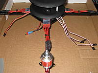 Name: IMG_1312.jpg