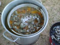 Name: seff 048.jpg