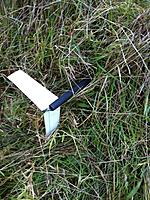Name: joshs photos 004.jpg