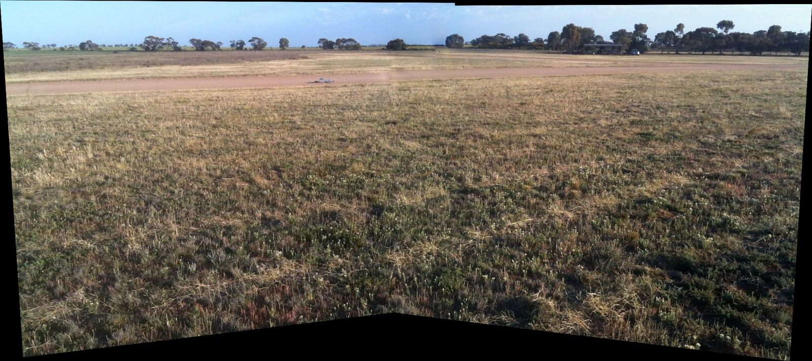 Panoramic view of the flying fields from the far end of one runway looking north. The clubrooms are in the centre right of the background (Durafly Vampire the grey smudge to the left of middle).