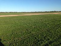 Name: runways.jpg