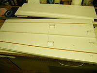 Name: DSCF8141.jpg