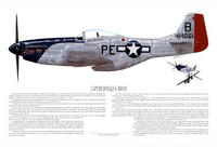 Name: print_P-51_Bryan.jpg