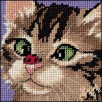 Name: crosseyedkittyPic.jpg