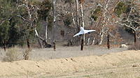 Name: image038.jpg