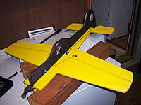Name: steeler plane.jpg