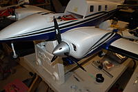 Name: DSC_4203.jpg