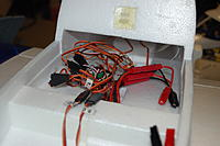 Name: DSC_4204.jpg