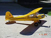 Name: cub 005.jpg