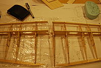 Name: DSC_0183.jpg