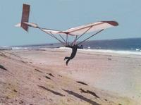 Name: 36' wingspan, foot launched, 3-axis control glider.jpg