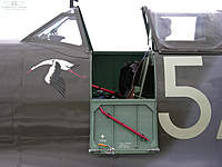 Name: cockpit-door.jpg