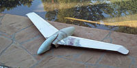 Name: WingEDF.jpg