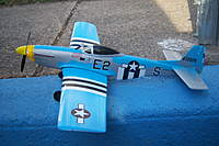 Name: 100_3990.jpg