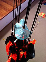 Name: IMG_2960.jpg