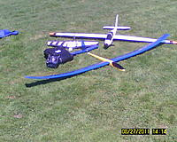 Name: Hobie Hawk Weasel Fox.jpg
