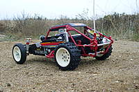 Name: wild24.jpg