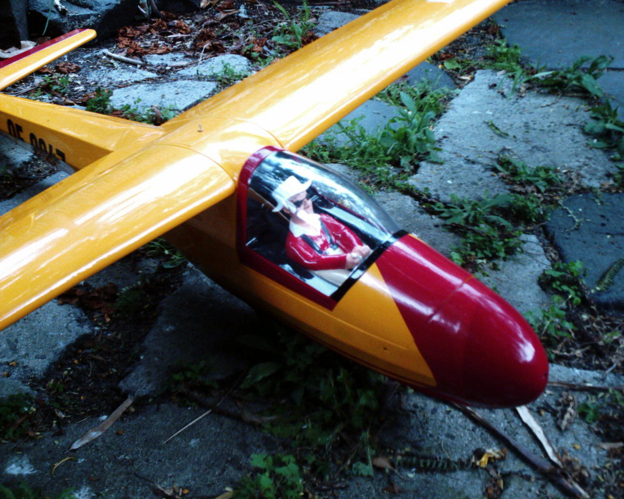 Name: KA8B-SEAGULL MODELS 002.jpg Views: 1,091 Size: 220.4 KB Description: vintage scale sailplane