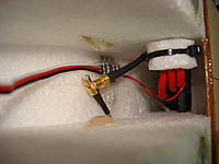 Name: DSC01339.jpg