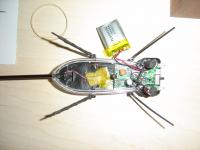Name: DSC04478.jpg