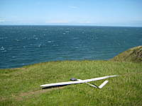 Name: IMG_0449.jpg