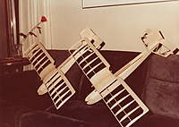 Name: Q-Tee 1.jpg