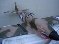 Name: GWS P-40 Style 3.jpg