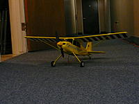 Name: P1000724.jpg