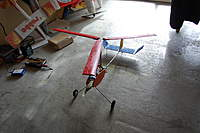 Name: DSC_2299.jpg