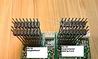 Name: IMAGE_317-2.jpg