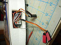 Name: P1040817.jpg