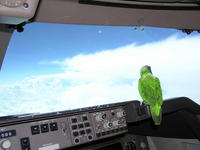 Name: co pilot on 747.JPG