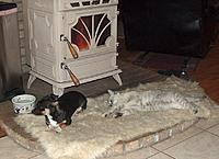 Name: PEPPIE~1.jpg