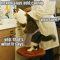Name: Add catnip.jpg