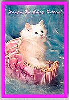 Name: kitten01.jpg Views: 32 Size: 78.9 KB Description: