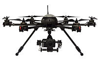 Name: AQML6_.jpg